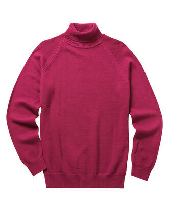 Cotton Roll Neck Sweater
