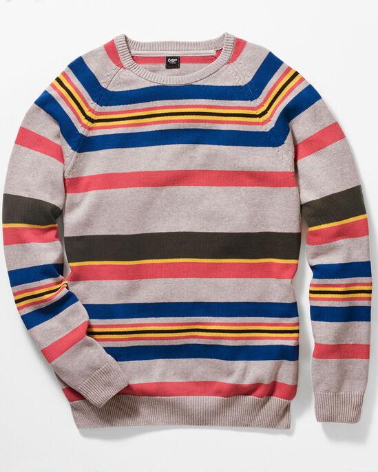 Stripe Cotton Crew Neck Sweater